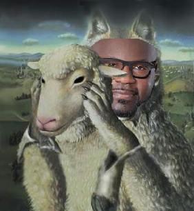 boyd_sheep